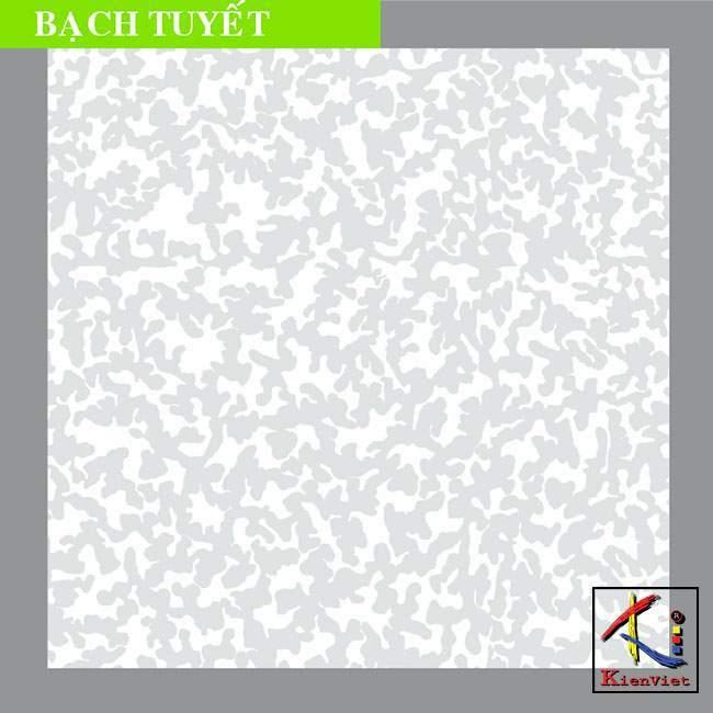 tam-bach-tuyet
